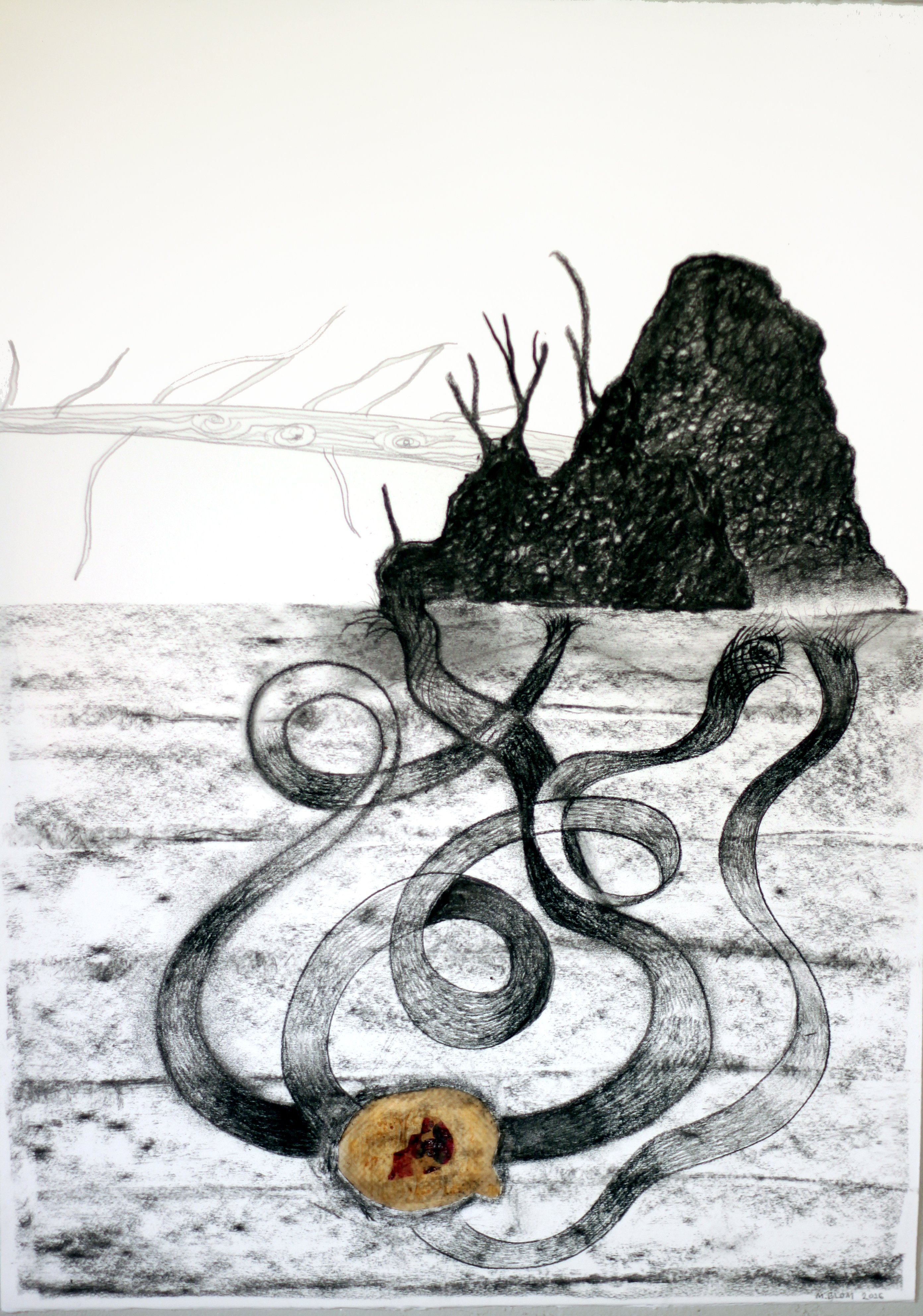 Rotvälta / Uprooted (2016) stained greaseproof paper and charcoal on paper, 50x70 cm