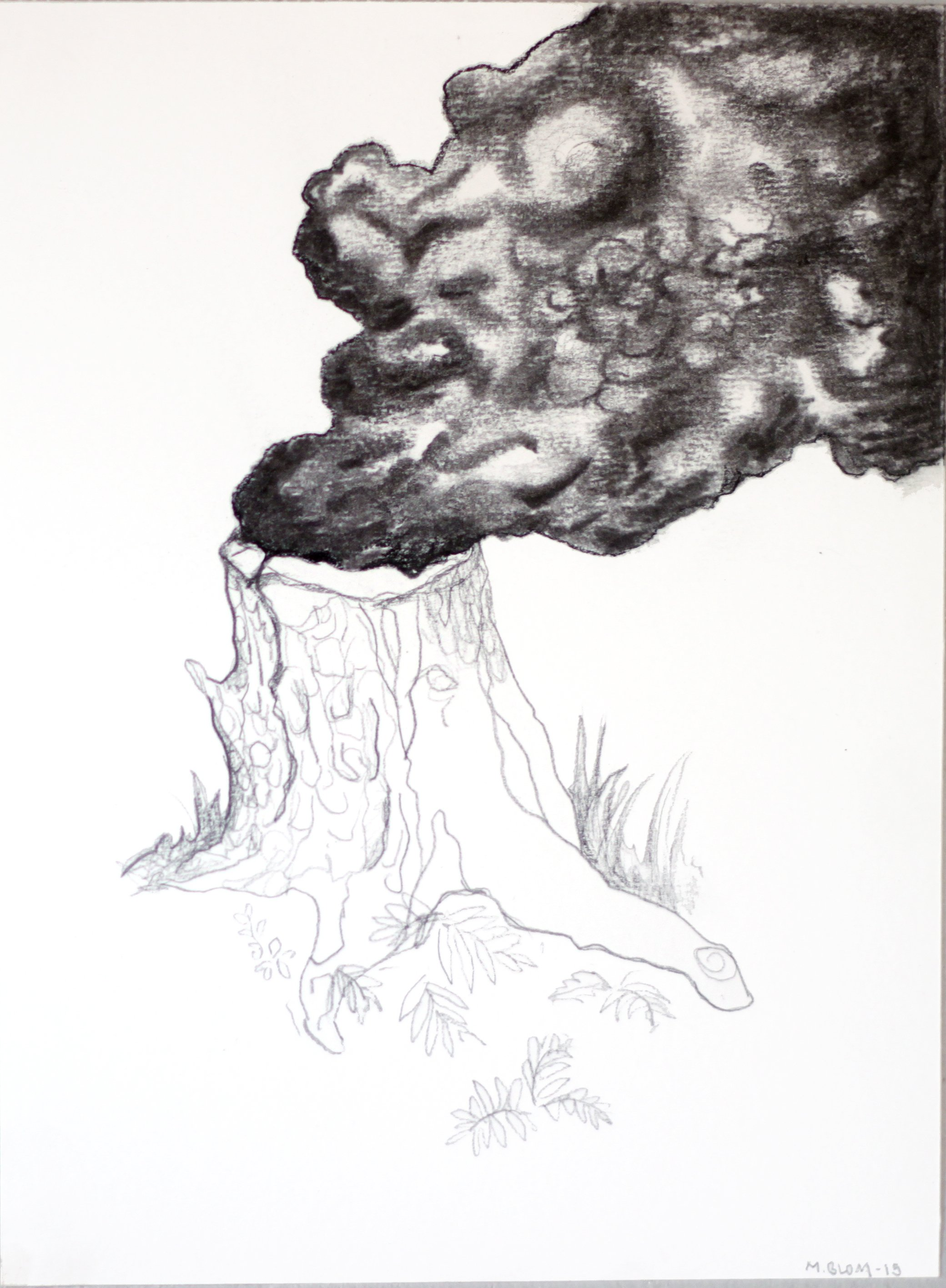 Stubbrand / Burning stump (2015) coal and pen on paper, 29x21 cm